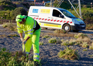 Environmental Services. Clearing vegetation by hand, Audeca